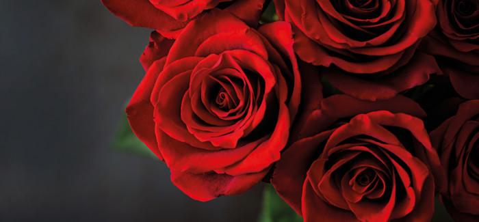 14. Februar Valentinstag im Restaurant musics