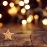 bigBOX-Allgaeu-Restaurant_musics-Weihnachtsbrunch_12_20_quadrat_blanko